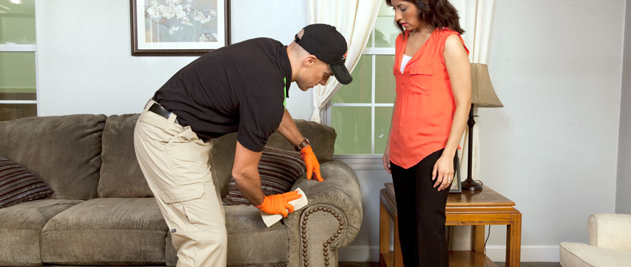 Warwick, RI carpet upholstery cleaning